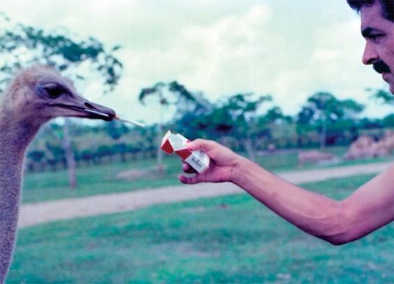 Fotos de Pablo Escobar